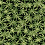 Lupine Leaves - Black / Green