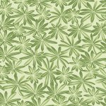 Lupine Leaves - Green